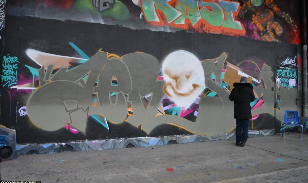 Photo de TOMB, réalisée au Maquis-art Wall of fame - L'aérosol, Paris