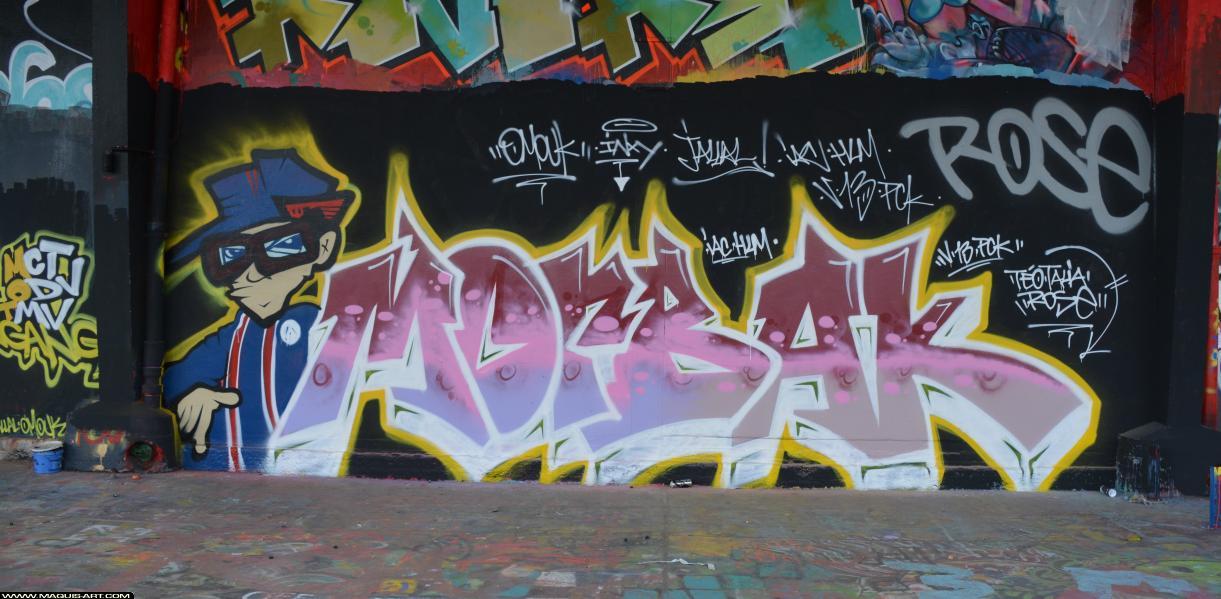 Photo de MORBAK, IAC, PCK, V13, HLM, réalisée au Maquis-art Wall of fame - L'aérosol, Paris