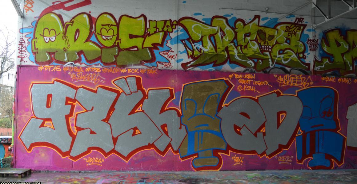 Photo de 93MC, réalisée au Maquis-art Wall of fame - L'aérosol, Paris