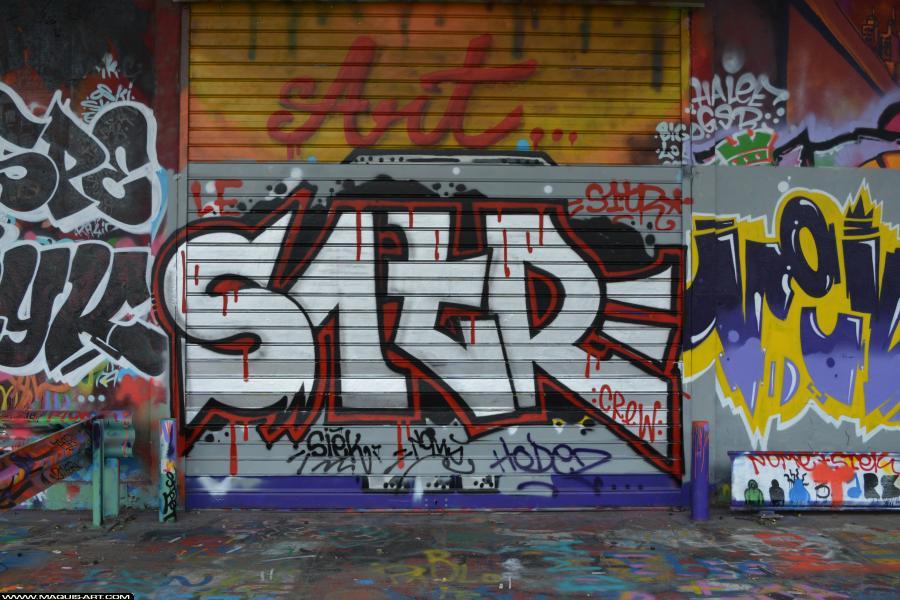Photo de S1TR, réalisée au Maquis-art Wall of fame - L'aérosol, Paris