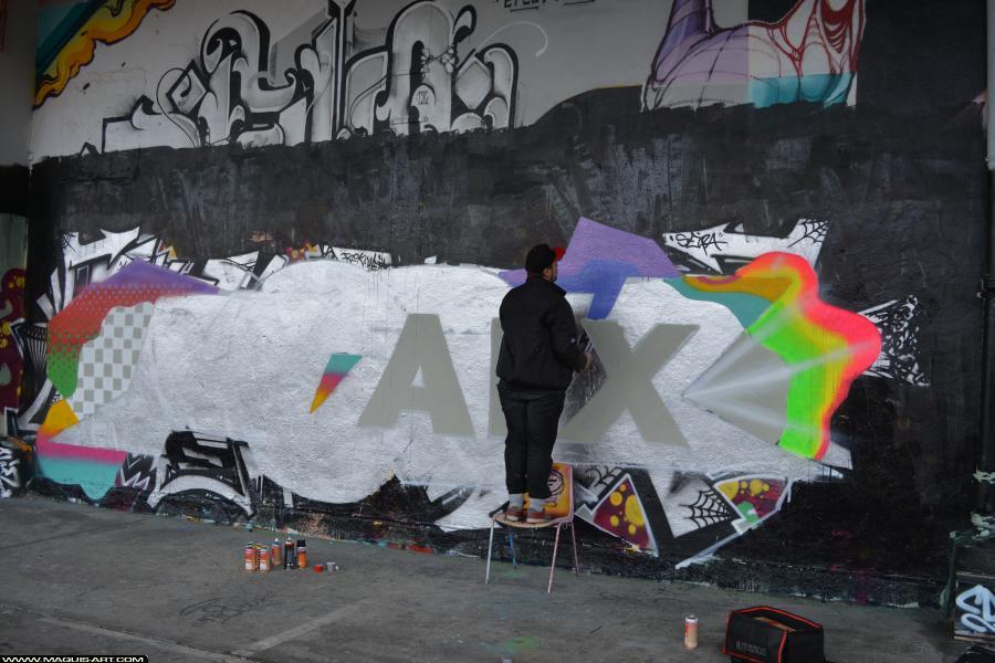 Photo de FORK, réalisée au Maquis-art Wall of fame - L'aérosol, Paris