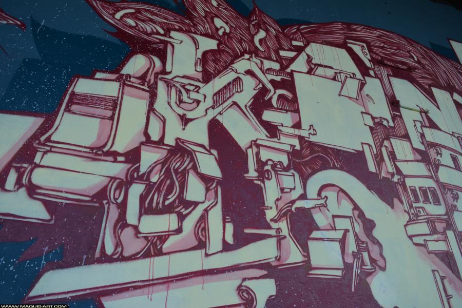 Photo de KANOS, réalisée au Maquis-art Wall of fame - L'aérosol, Paris