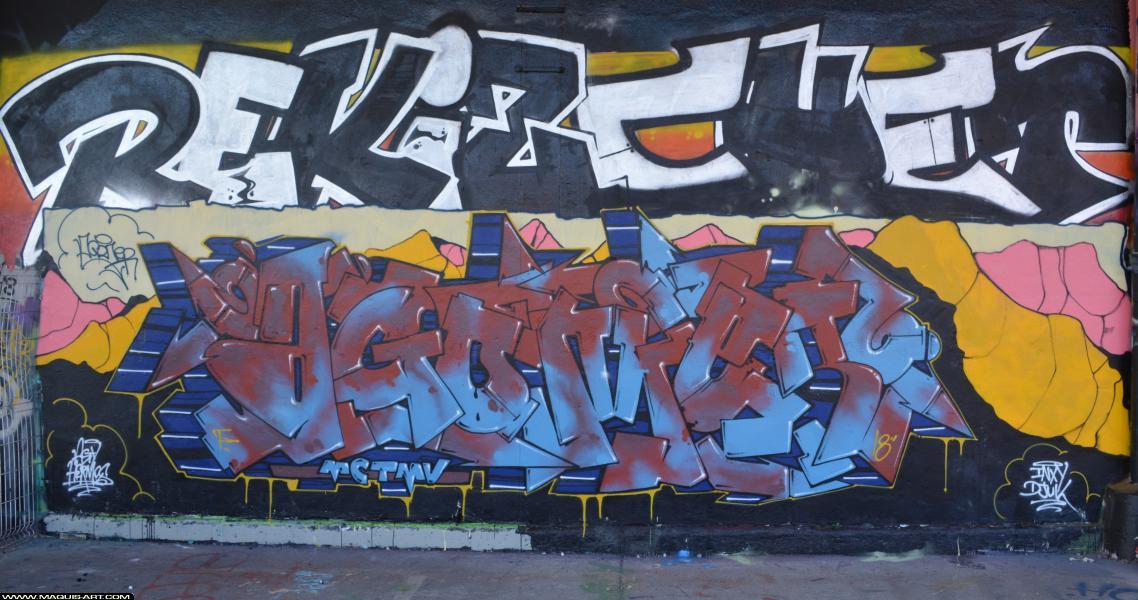 Photo de AGOMER, REKIZ, CHET, réalisée au Maquis-art Wall of fame - L'aérosol, Paris