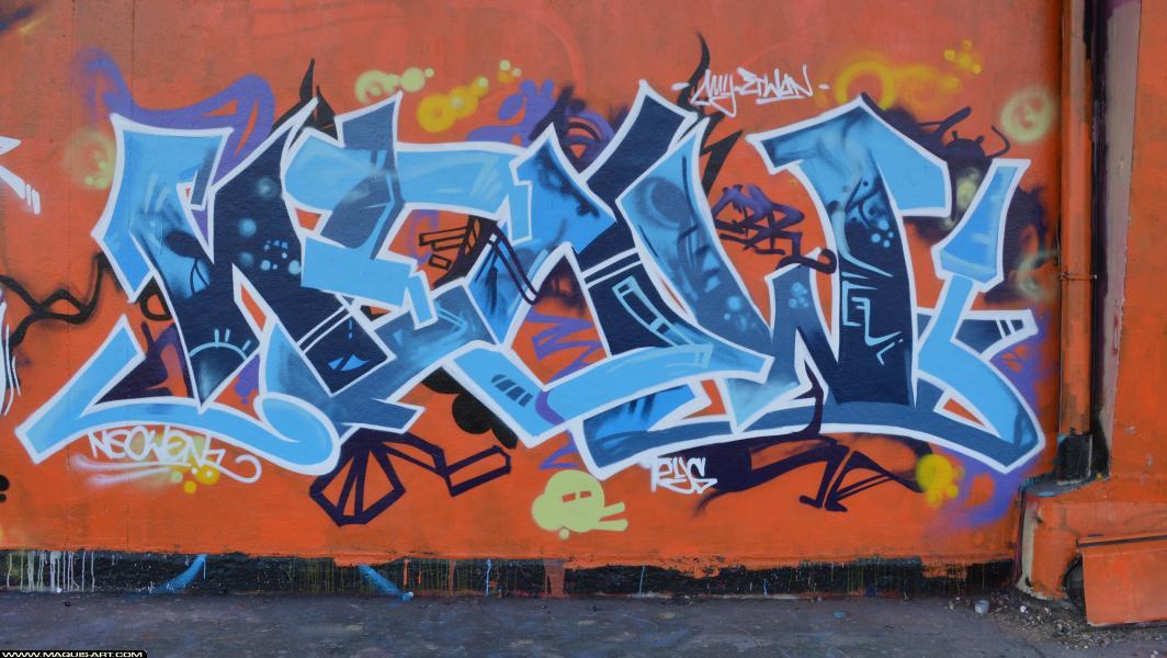 Photo de NEOW, CBR, réalisée au Maquis-art Wall of fame - L'aérosol, Paris