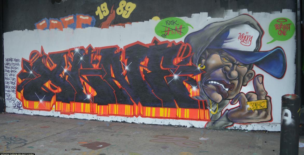 Photo de XANE, réalisée au Maquis-art Wall of fame - L'aérosol, Paris