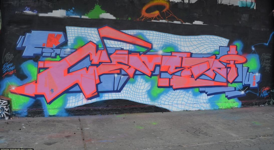 Photo de DEMSKI, réalisée au Maquis-art Wall of fame - L'aérosol, Paris