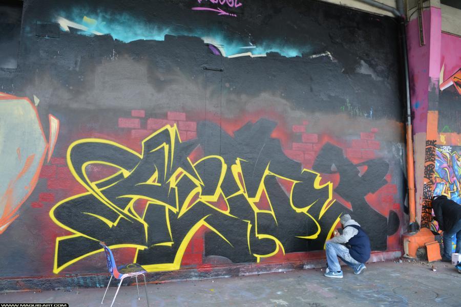 Photo de ACME, SMF, V13, réalisée au Maquis-art Wall of fame - L'aérosol, Paris