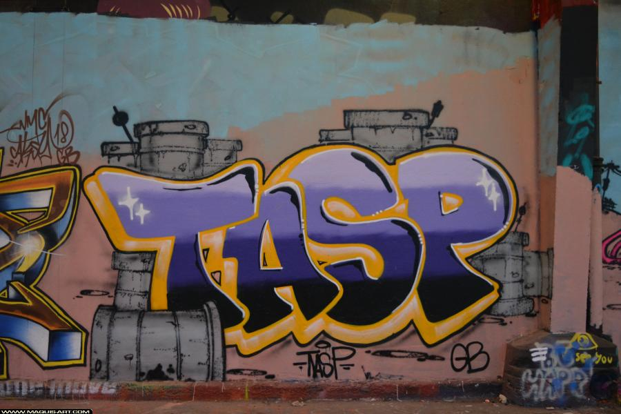 Photo de TASP, réalisée au Maquis-art Wall of fame - L'aérosol, Paris