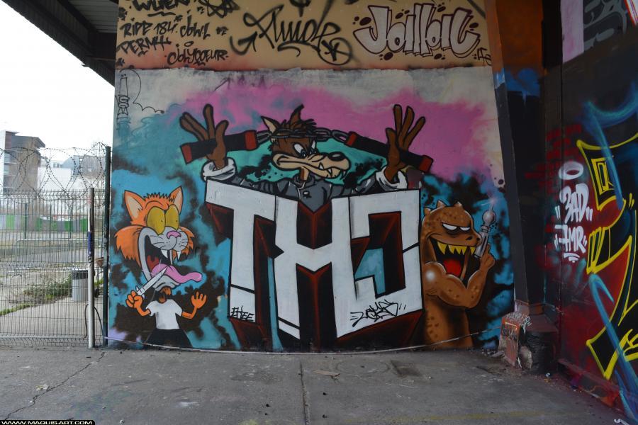 Photo de CKT, réalisée au Maquis-art Wall of fame - L'aérosol, Paris