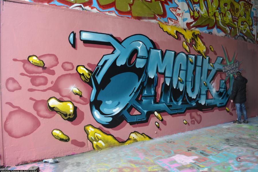 Photo de OMOUK, FR75, 319, ODV, réalisée au Maquis-art Wall of fame - L'aérosol, Paris