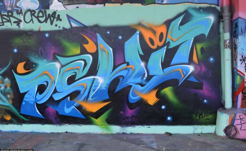 Photo de PSHIT, CDB, SR, réalisée au Maquis-art Wall of fame - L'aérosol, Paris