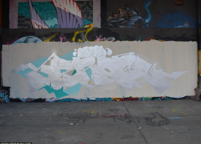 Photo de SROPE, réalisée au Maquis-art Wall of fame - L'aérosol, Paris