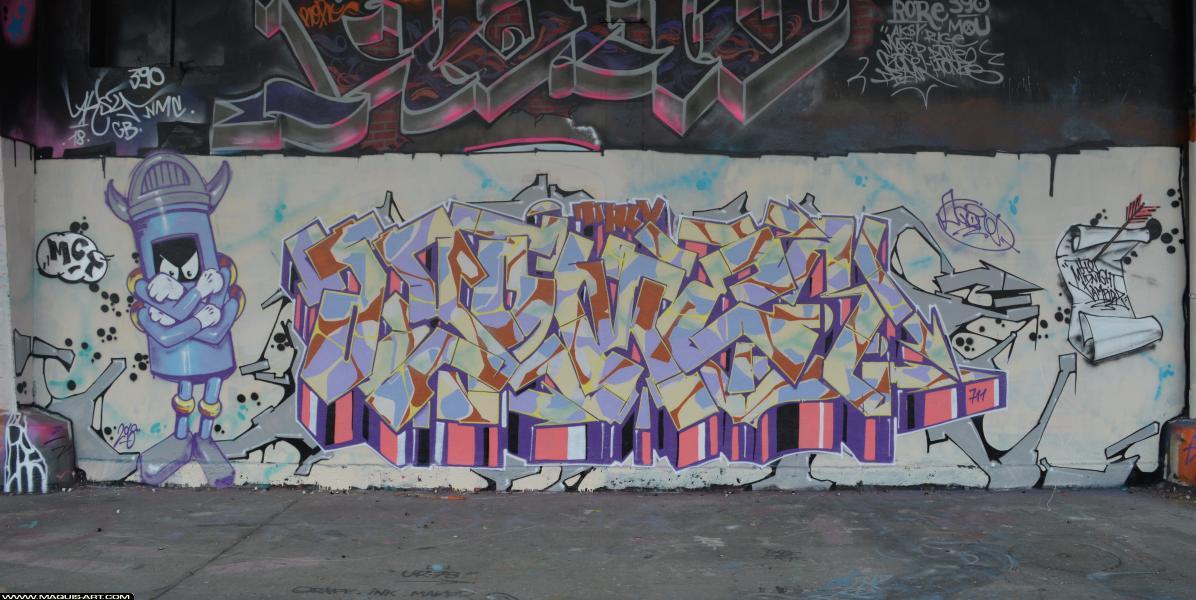 Photo de AGOMER, TMV, MCT, réalisée au Maquis-art Wall of fame - L'aérosol, Paris