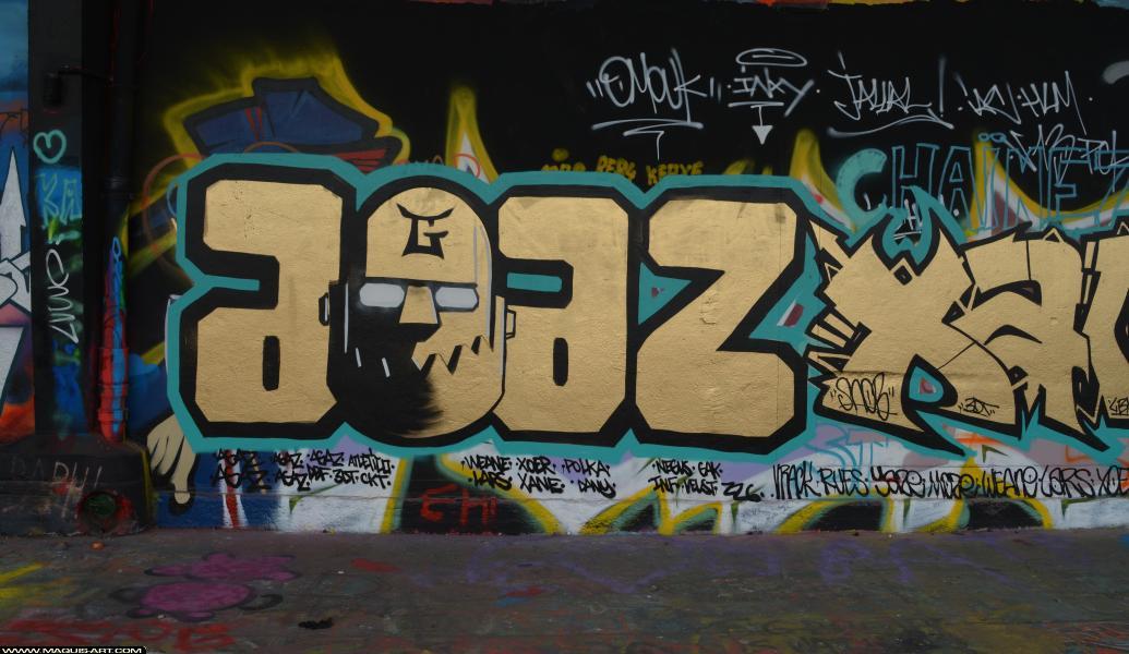 Photo de AGAZ, 3DT, CKT, réalisée au Maquis-art Wall of fame - L'aérosol, Paris