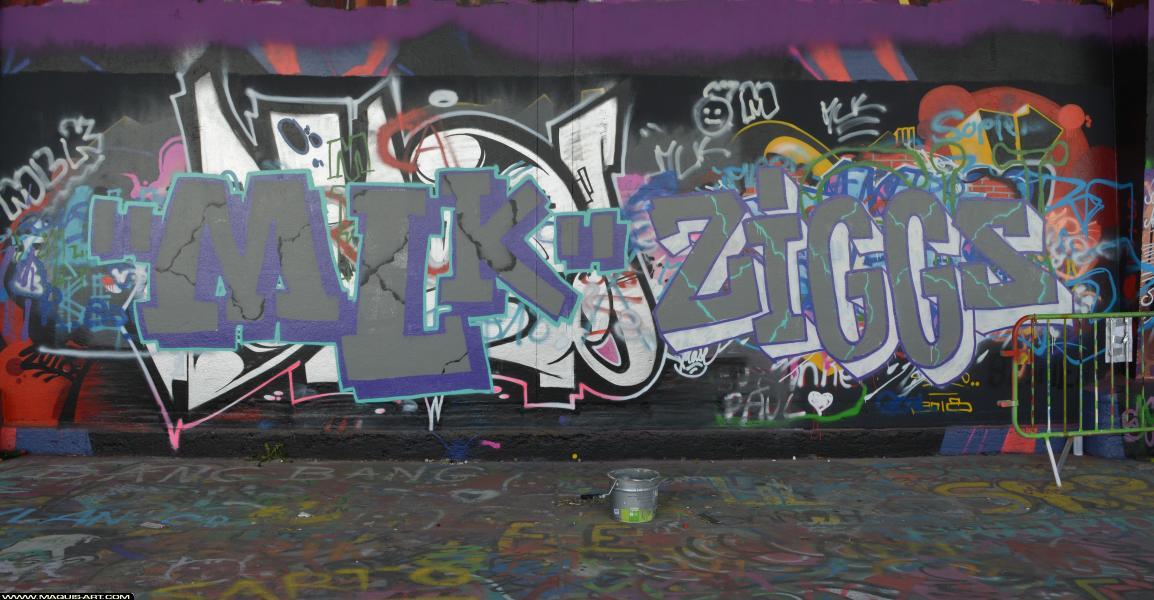 Photo de ZIGGS, MLK, réalisée au Maquis-art Wall of fame - L'aérosol, Paris