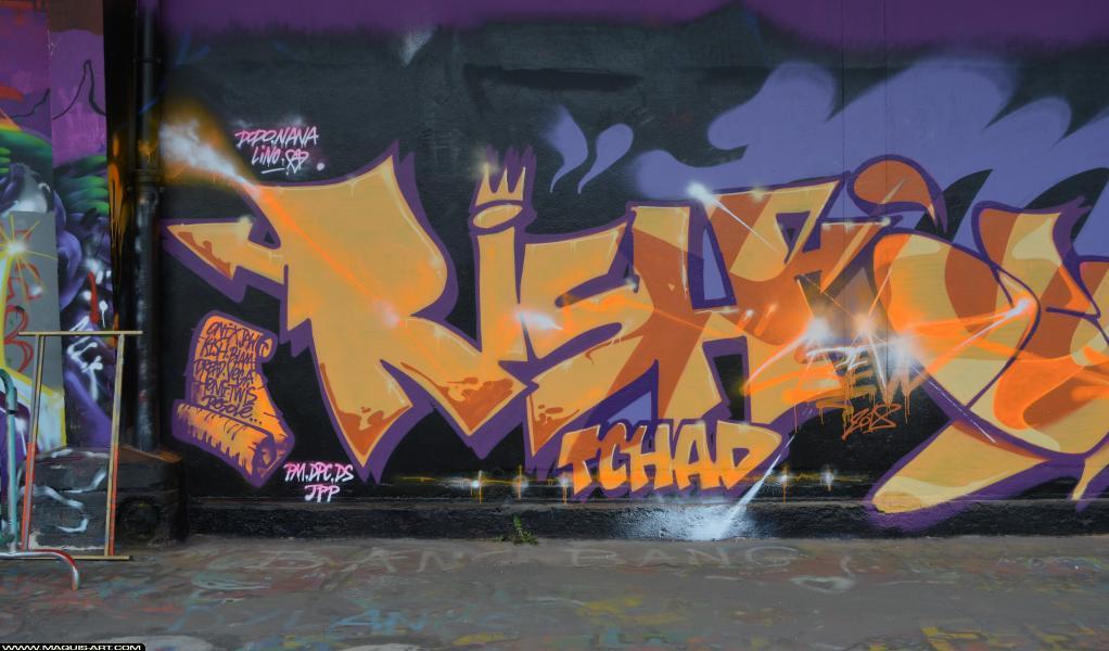 Photo de RISH, réalisée au Maquis-art Wall of fame - L'aérosol, Paris