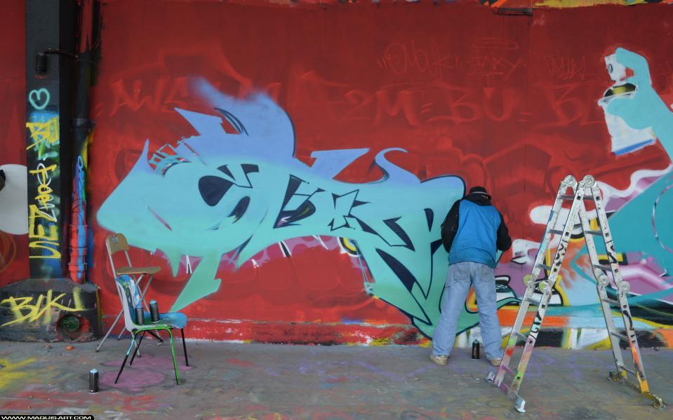 Photo de SEAZ (TVA CP5), OVF, OSC, NVM, réalisée au Maquis-art Wall of fame - L'aérosol, Paris