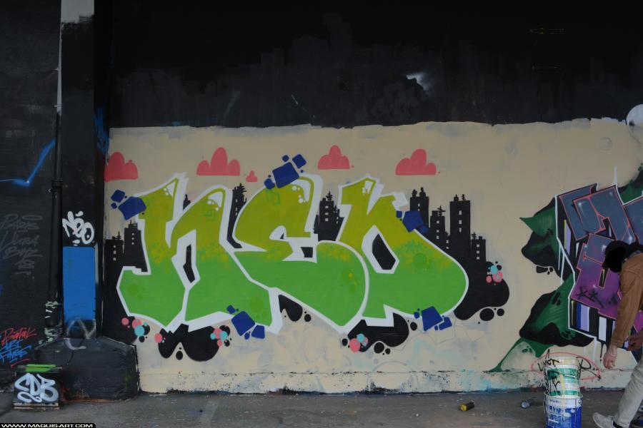 Photo de NEO, réalisée au Maquis-art Wall of fame - L'aérosol, Paris