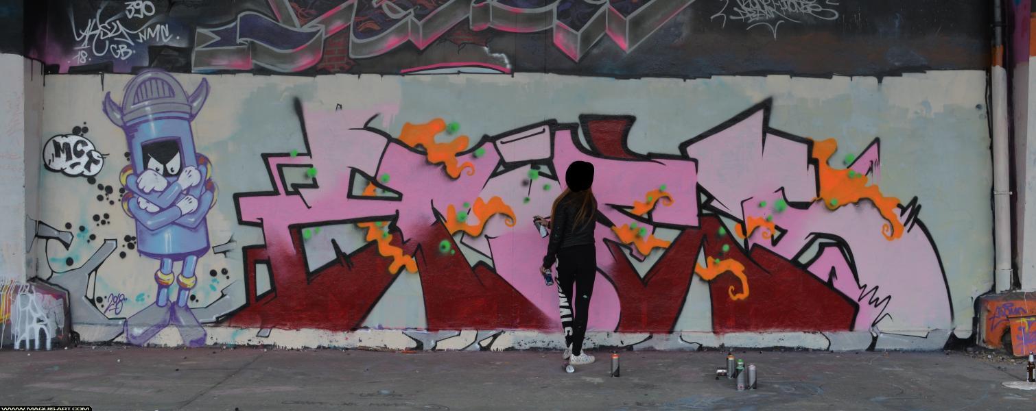 Photo de ZOEA, DQV, PSG, TLS, réalisée au Maquis-art Wall of fame - L'aérosol, Paris