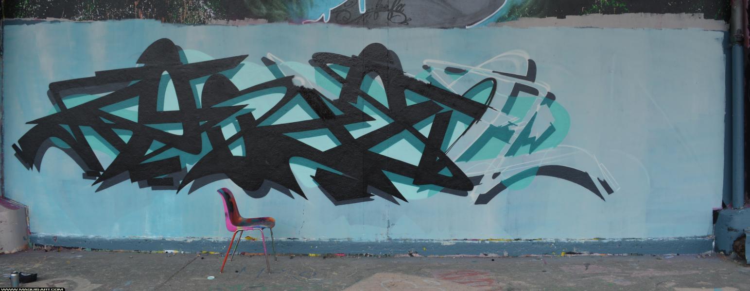 Photo de ZOYER, 3UP, AOA, réalisée au Maquis-art Wall of fame - L'aérosol, Paris
