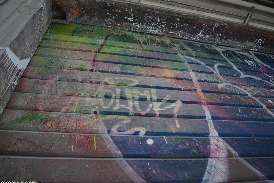 Photo de OMOUK, 319, FR75, réalisée au Maquis-art Wall of fame - L'aérosol, Paris