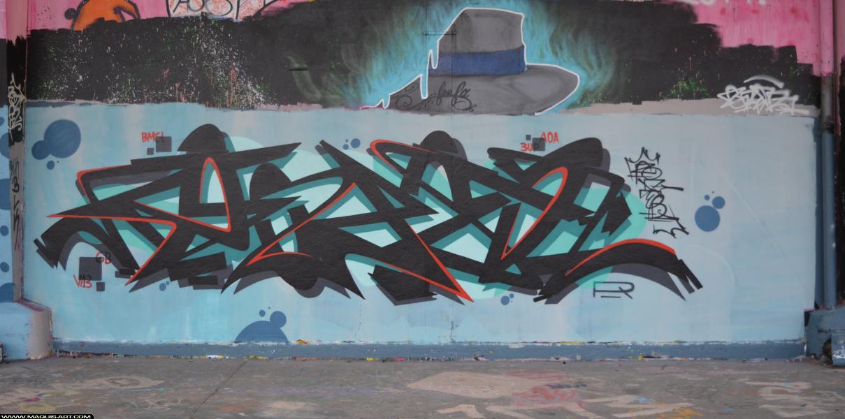 Photo de ZOER, réalisée au Maquis-art Wall of fame - L'aérosol, Paris