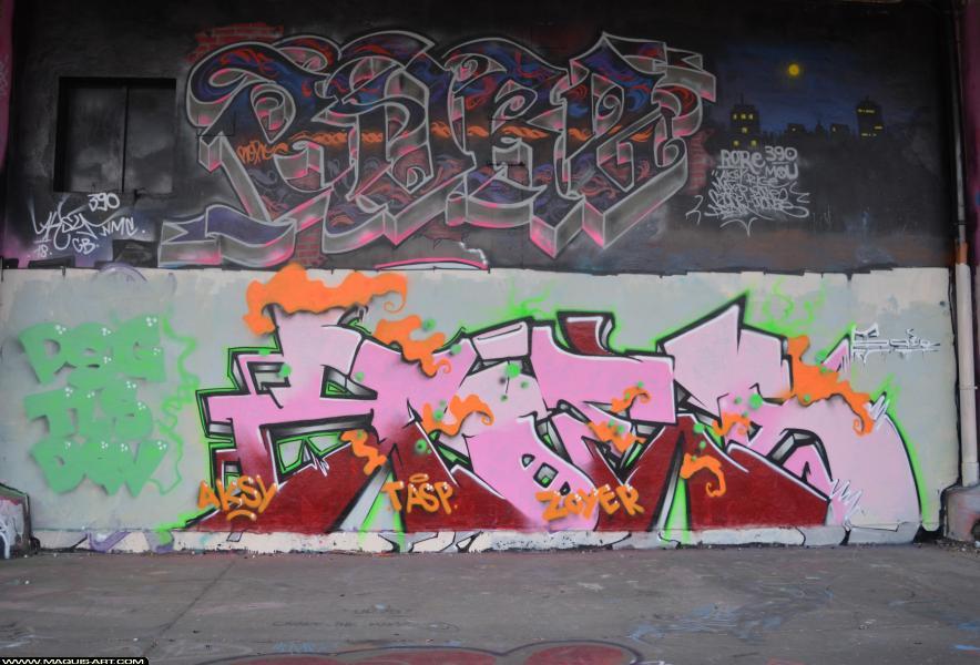 Photo de ZOEA, PSG, DQV, TLS, réalisée au Maquis-art Wall of fame - L'aérosol, Paris