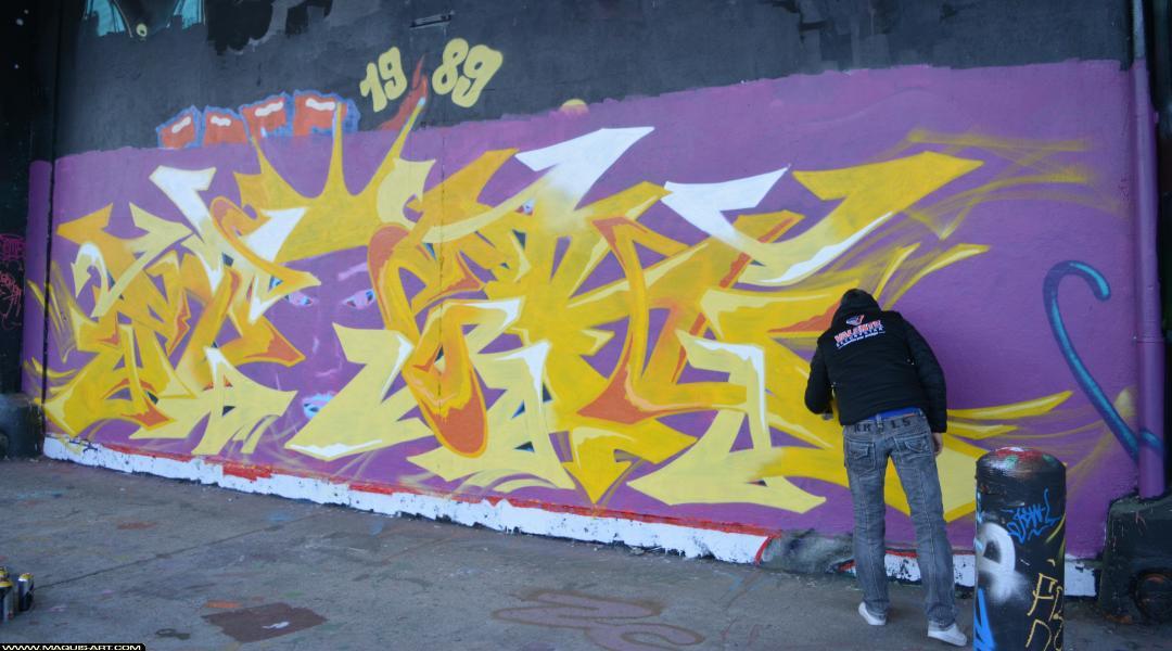 Photo de MIZER, DEF, RG, réalisée au Maquis-art Wall of fame - L'aérosol, Paris
