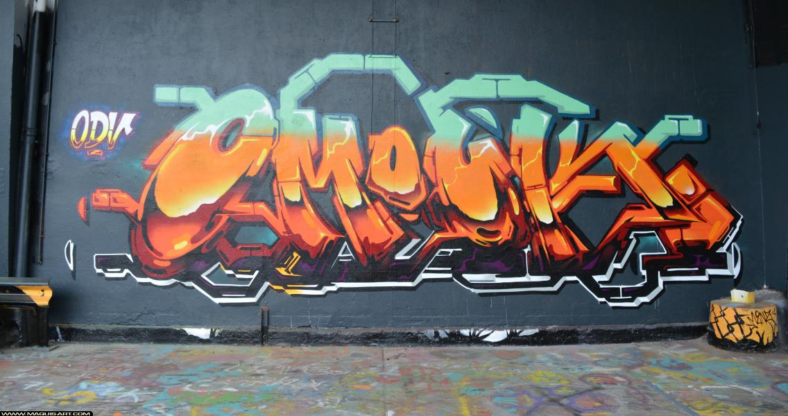 Photo de OMOUK, ODV, réalisée au Maquis-art Wall of fame - L'aérosol, Paris