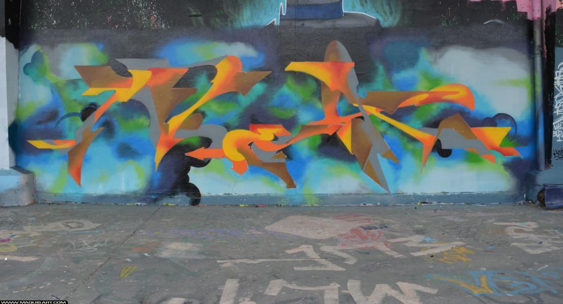 Photo de NEK, réalisée au Maquis-art Wall of fame - L'aérosol, Paris