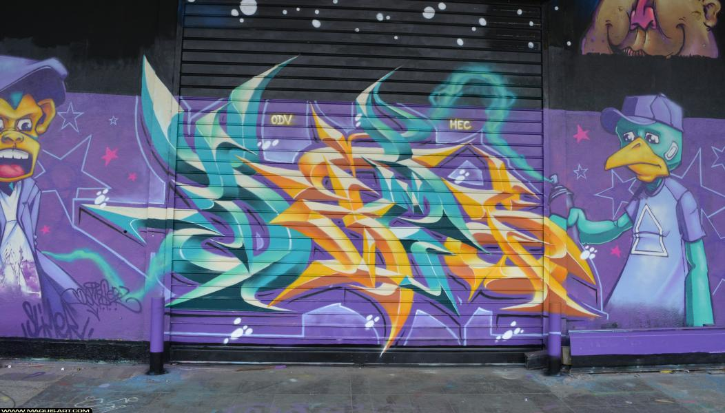 Photo de DAMS (HEC ODV), ???, réalisée au Maquis-art Wall of fame - L'aérosol, Paris