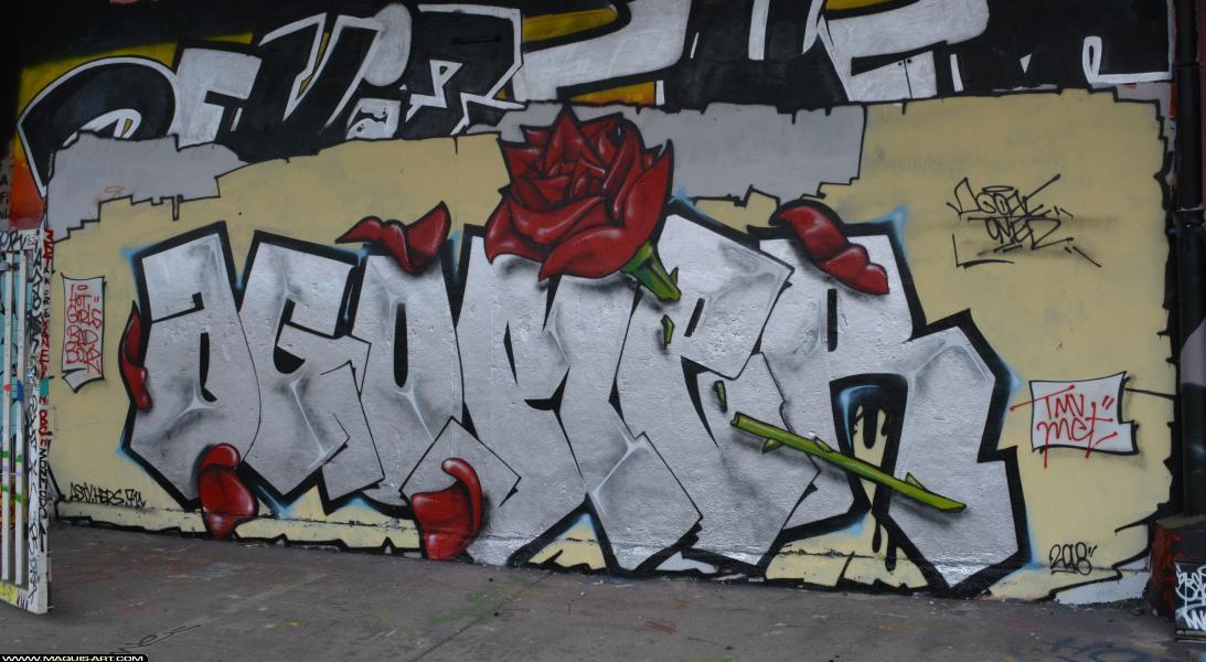 Photo de AGOMER, MCT, TMV, réalisée au Maquis-art Wall of fame - L'aérosol, Paris