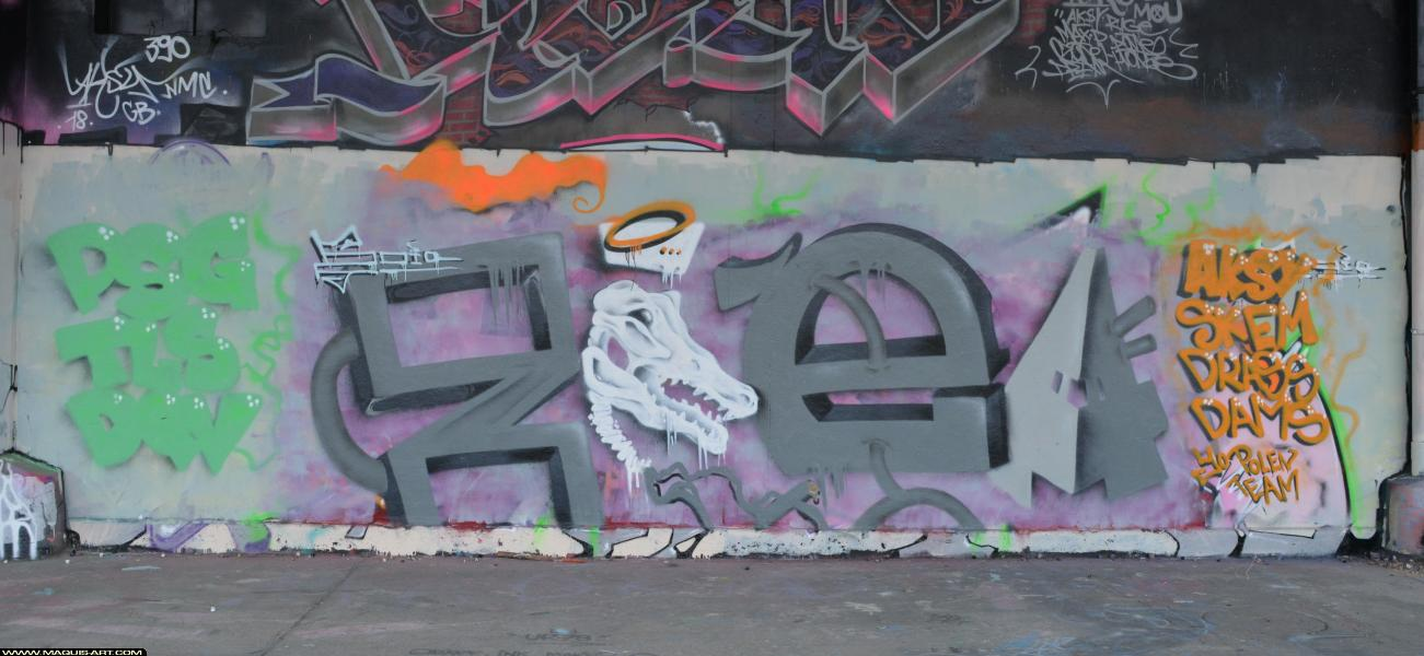 Photo de ZOEA, TLS, PSG, DQV, réalisée au Maquis-art Wall of fame - L'aérosol, Paris