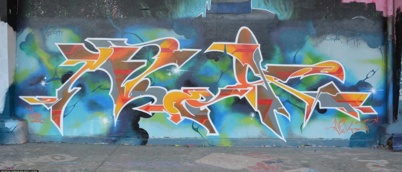Photo de NOK, réalisée au Maquis-art Wall of fame - L'aérosol, Paris