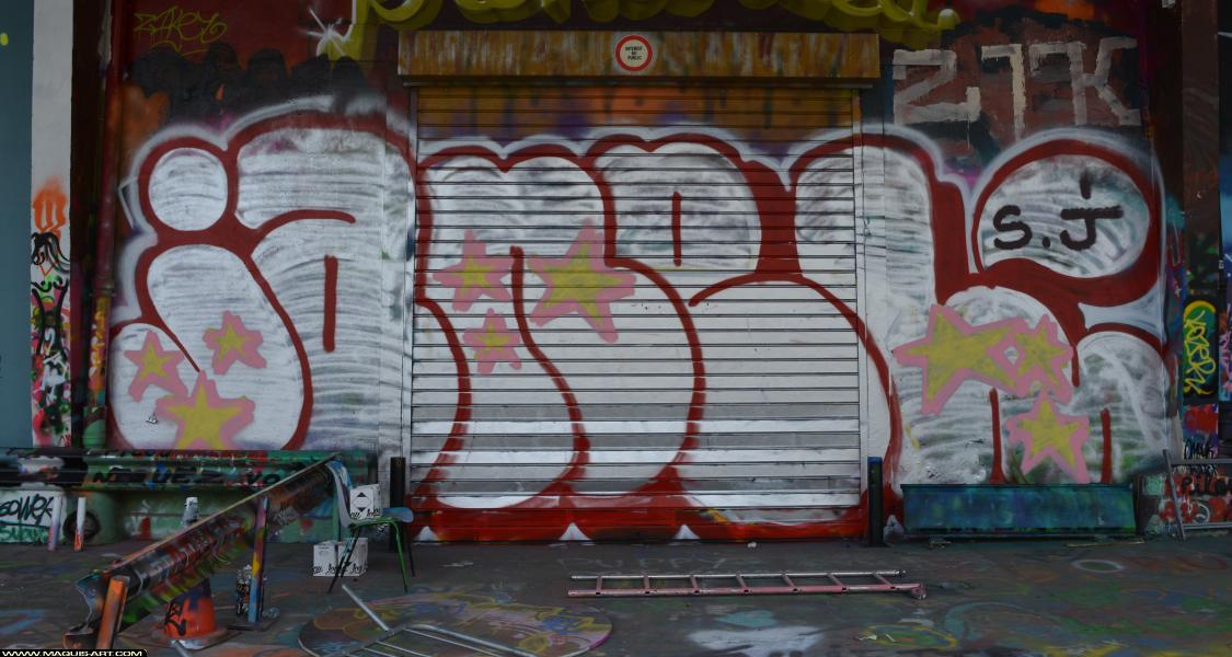Photo de JANEL, réalisée au Maquis-art Wall of fame - L'aérosol, Paris