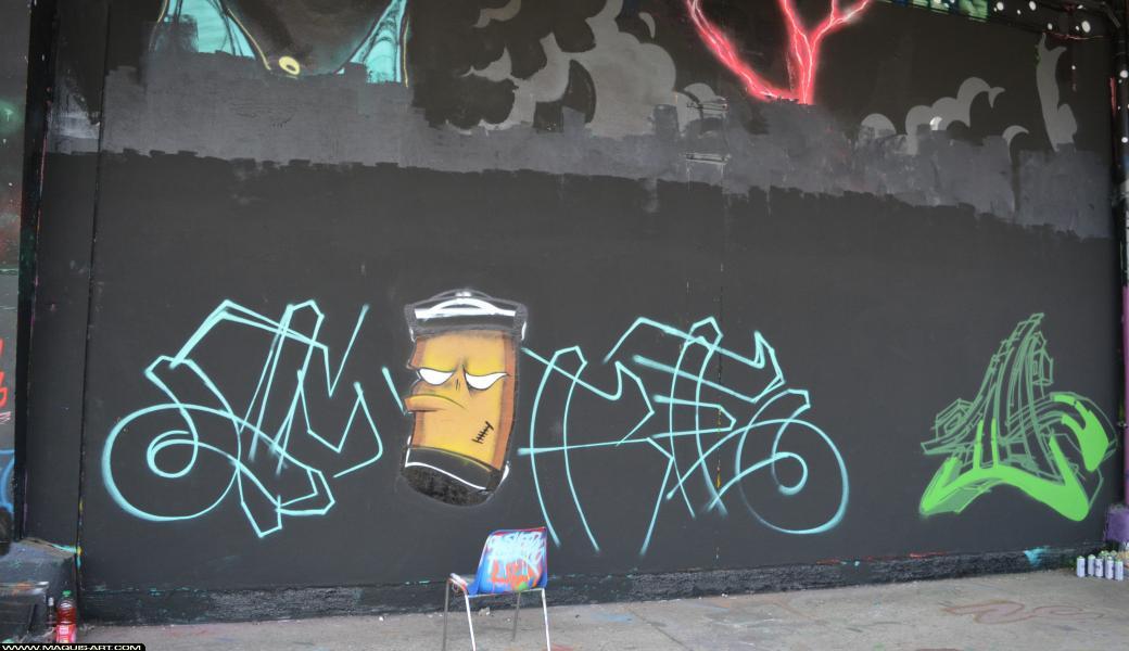 Photo de MIRE, réalisée au Maquis-art Wall of fame - L'aérosol, Paris