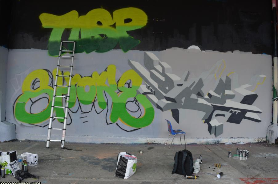 Photo de SHOKE, TPM, OBKOS, TVA, GB, réalisée au Maquis-art Wall of fame - L'aérosol, Paris