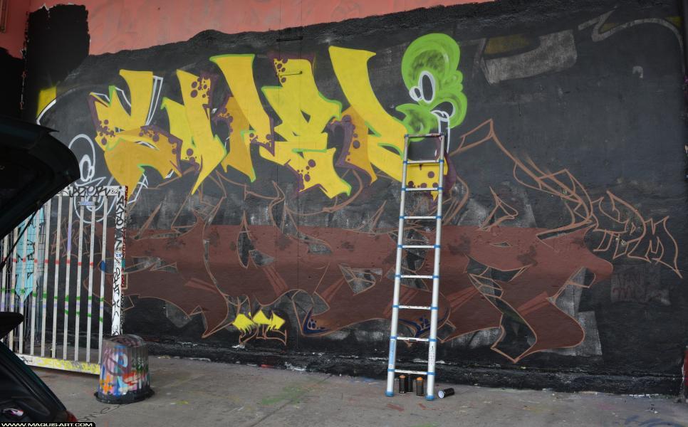 Photo de SOPER, SOER, TPM, A2M, DTC(2), réalisée au Maquis-art Wall of fame - L'aérosol, Paris