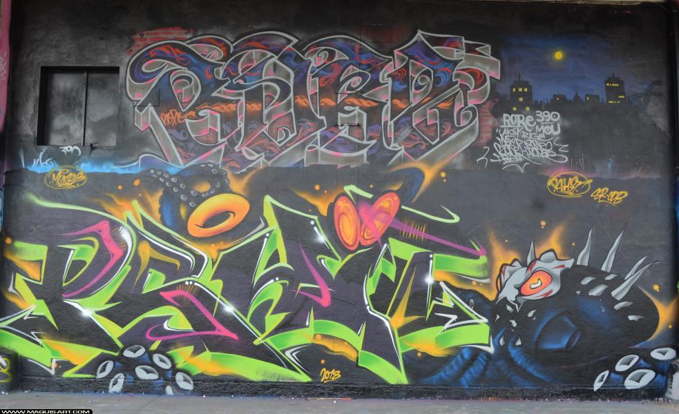 Photo de PSHIT, RORE, réalisée au Maquis-art Wall of fame - L'aérosol, Paris