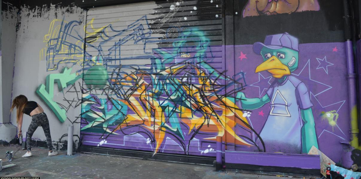 Photo de ZOEA, SAMER, réalisée au Maquis-art Wall of fame - L'aérosol, Paris