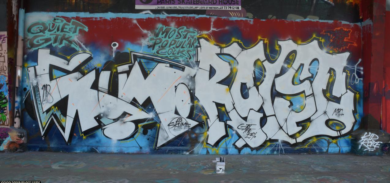 Photo de SKUME, ROYS, réalisée au Maquis-art Wall of fame - L'aérosol, Paris