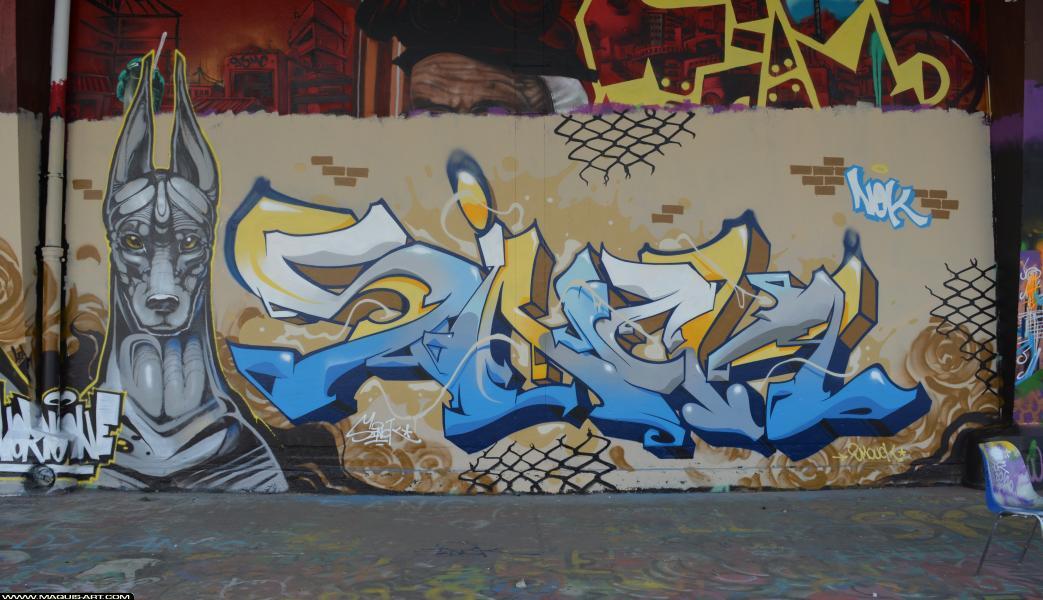 Photo de SINCK, ONOFF, NOK, NORIONE, réalisée au Maquis-art Wall of fame - L'aérosol, Paris