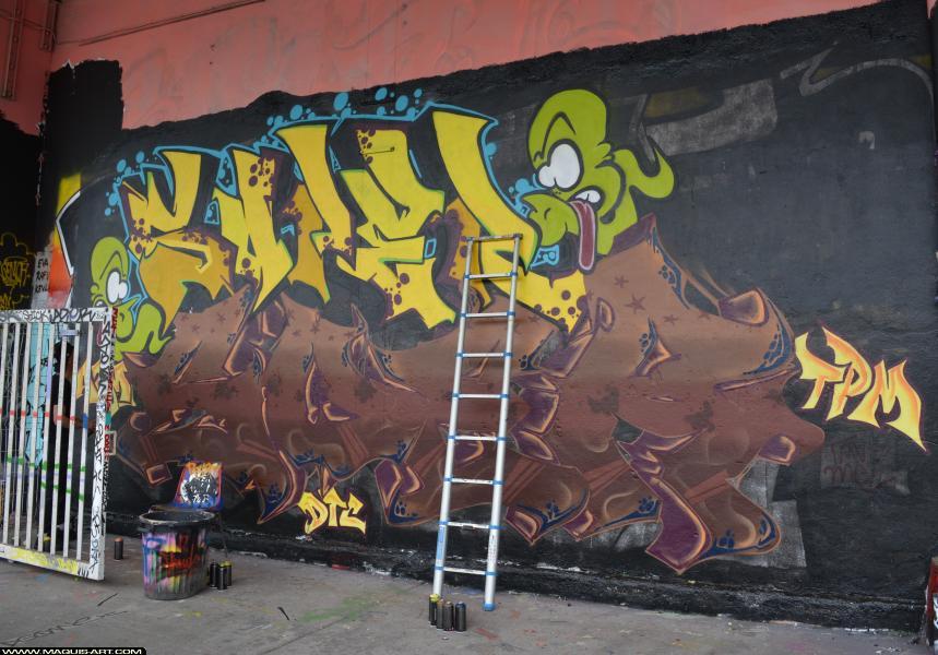 Photo de SOPER, SOER, réalisée au Maquis-art Wall of fame - L'aérosol, Paris