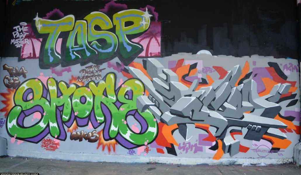 Photo de TASP, SHOKE, ???, réalisée au Maquis-art Wall of fame - L'aérosol, Paris