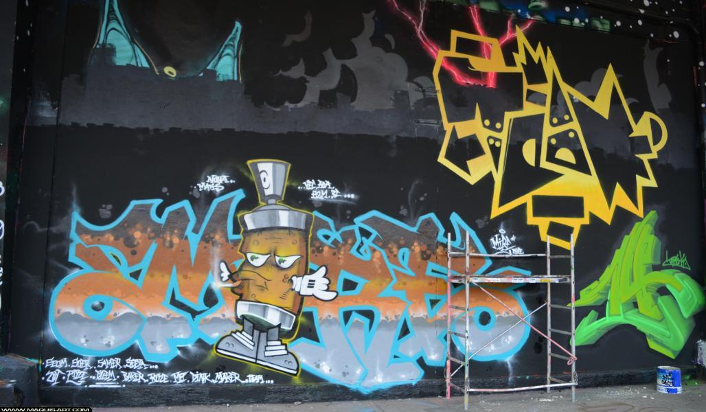 Photo de MIRE, TEAM, ???, réalisée au Maquis-art Wall of fame - L'aérosol, Paris