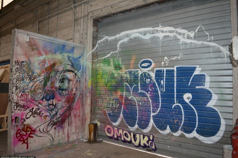 Photo de OMOUK, JALLAL, réalisée au Maquis-art Wall of fame - L'aérosol, Paris