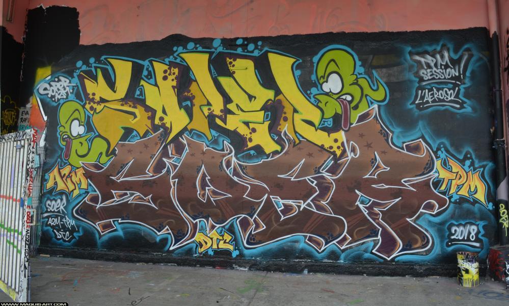 Photo de SOPER, SOER, A2M, TPM, DTC, réalisée au Maquis-art Wall of fame - L'aérosol, Paris
