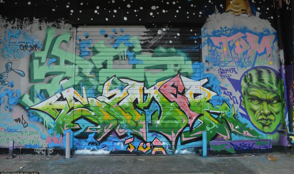Photo de SAMER, ZOEA, réalisée au Maquis-art Wall of fame - L'aérosol, Paris