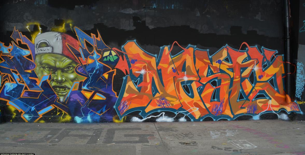 Photo de FAST, NESTA, réalisée au Maquis-art Wall of fame - L'aérosol, Paris