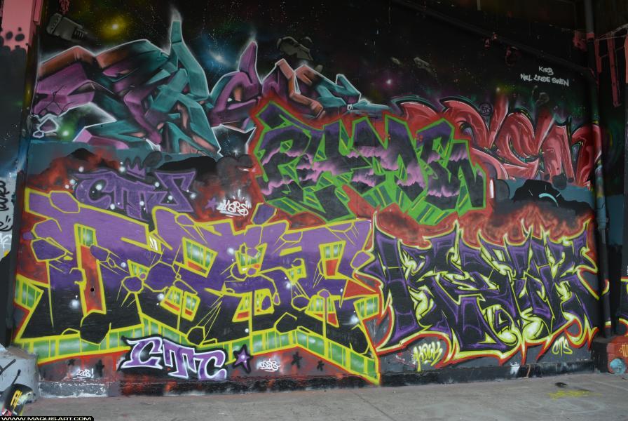 Photo de DAZER, KOUK, CTS, CTC, réalisée au Maquis-art Wall of fame - L'aérosol, Paris